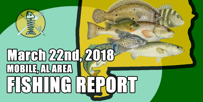 I've seen soo many awesome sheepshead reports in the past couple weeks it's amazing. If you've never targeted them, now is th