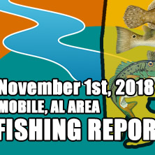 Fishing Report November 1st 2018