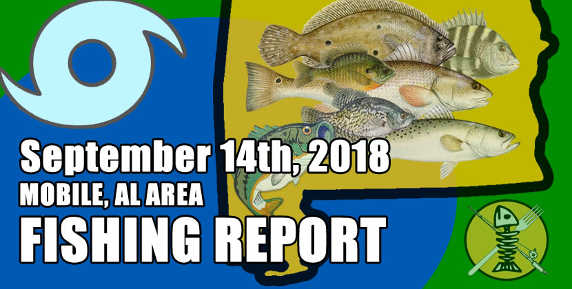 Hurricane season is in overdrive and the weather is about to start cooling down. There are a lot of redfish still being caugh