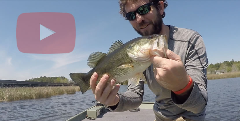 Dog River Fishing Video - Mobile, AL - Largemouth Bass - March 23rd, 2019