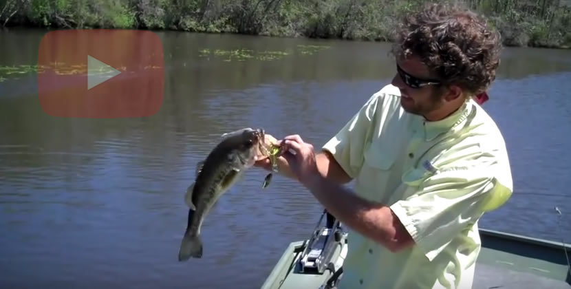 Dog River Fishing Video - Mobile, AL - Largemouth Bass - March 24th, 2012