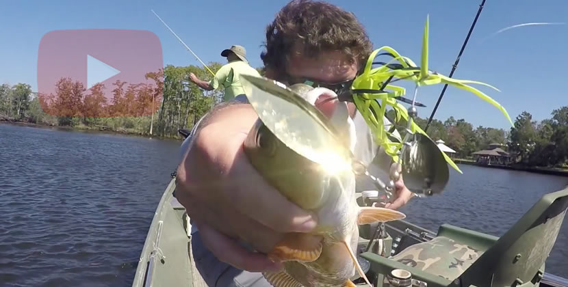 Dog River Fishing Video - Mobile, AL - Largemouth Bass, Redfish, Goggle-Eye - October 8th, 2016