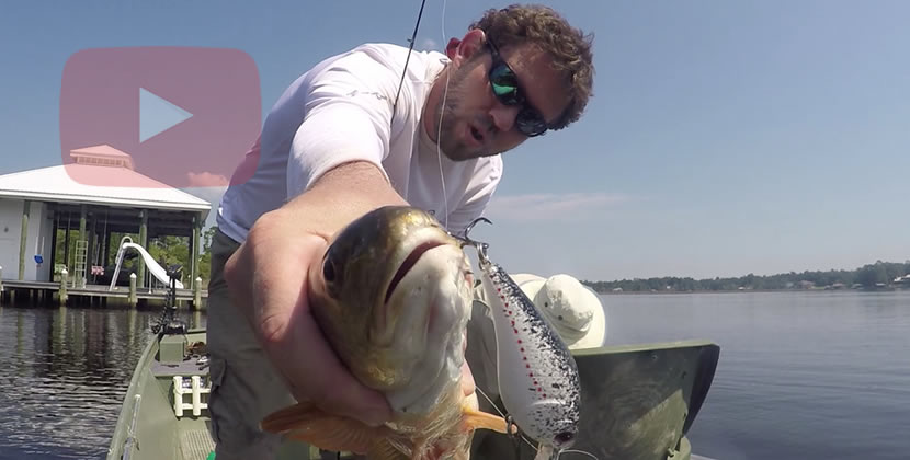 Fowl River Fishing Video - Theodore, AL - Redfish, Speckled Trout, Largemouth Bass - September 25th, 2016