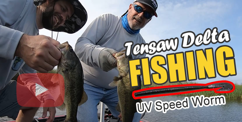 Mobile Tensaw Delta Fishing Video - Mobile, AL - Largemouth Bass - July 11th, 2020